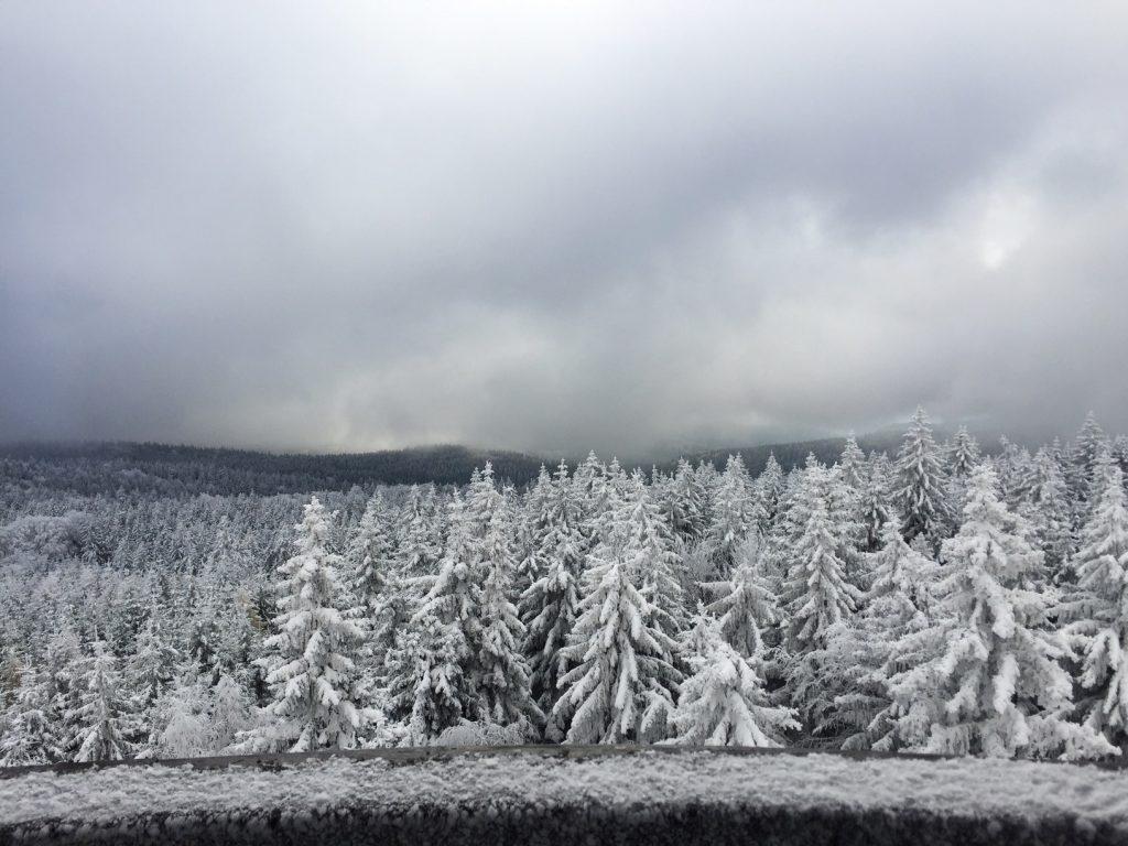 Borówkowa Góra